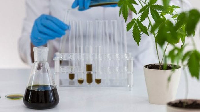 Cannabis LIMS Designed Specifically for your Laboratory