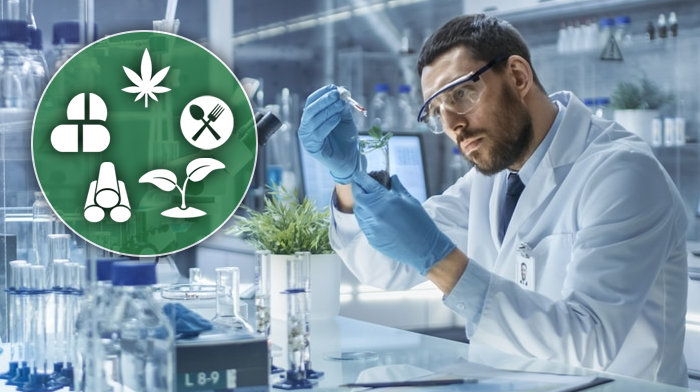 Diversification The Key to Surviving as a Canna Testing Lab