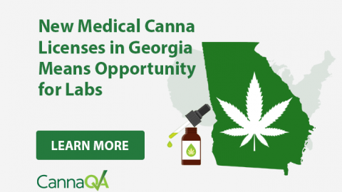New Medical Canna Licenses in Georgia Means Opportunity for Labs