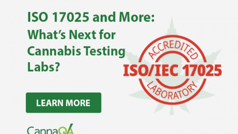 ISO 17025 and More – What's Next for Cannabis Testing Labs?